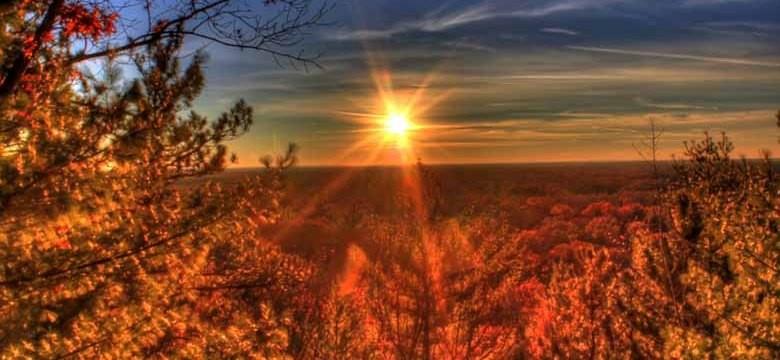 La vitamine D et le soleil
